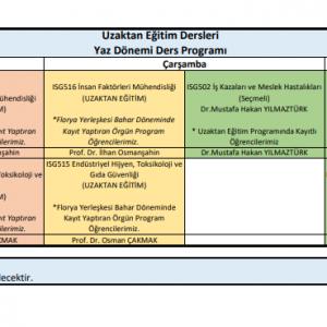 İSG Yüksek Lisans | Yaz Dönemi Ders Programı